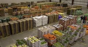 food-logistics