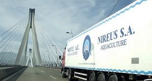 NIREUS 216