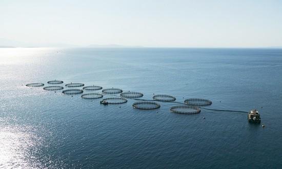 fisheries-prl